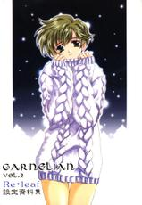[CARNELIAN] CARNELIAN vol.2  - Re·Leaf Settei Shiryou Tsudo