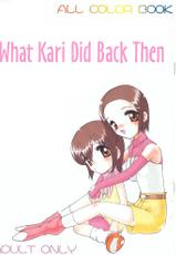 What Kari Did Back Then (English) (Digimon)